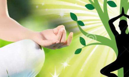 Attivazione Bioenergetica