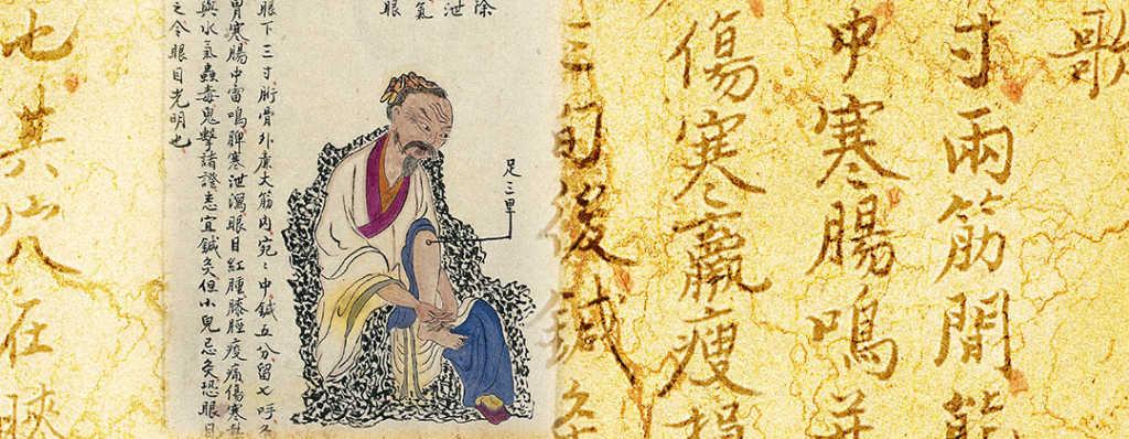 Zu San Li: il punto della longevità