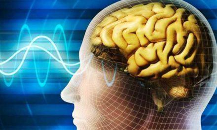 Come il Cervello influenza la Realtà
