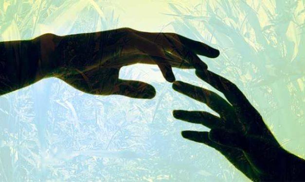 Empatia: impariamo a coltivarla per vivere insieme in armonia