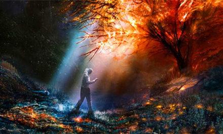 Dallo Spirito alla Materia: il processo evolutivo della Mente