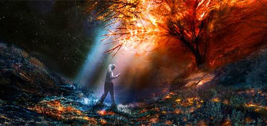 Le 5 leggi dello specchio crescita spirituale - La legge dello specchio ...