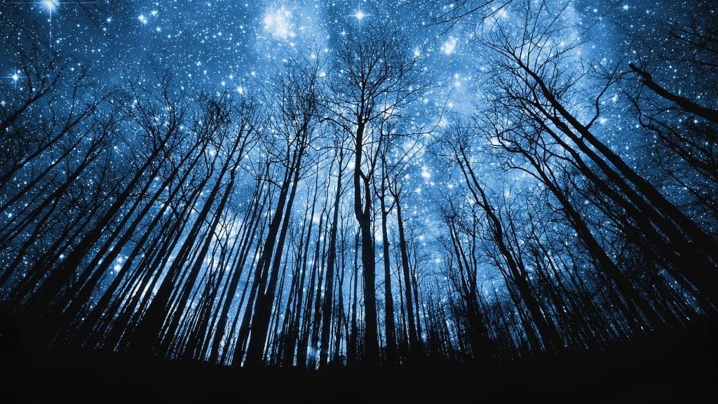 coscienza-cosmica-campo-quantico-fisica-quantistica-crescita-spirituale