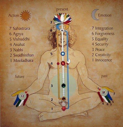 dita-mano-elementi-natura-mudra-crescita-spirituale