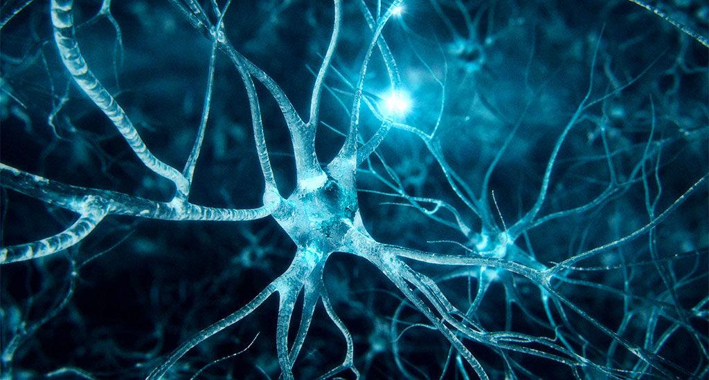 sinapsi_creatori_realta_crescita_spirituale