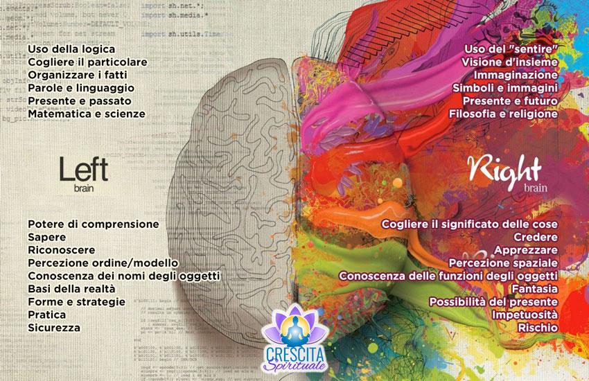 cervello_emisfero_destro_sinistro_linguaggio_organi_sintomi