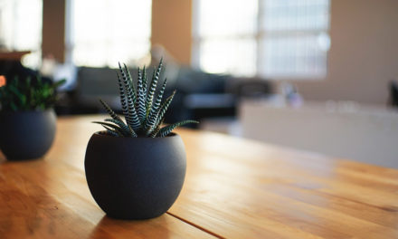 Come purificare la tua casa da energie negative