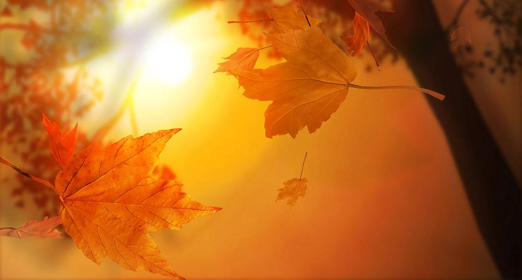 Equinozio d'autunno: prepariamoci a fare una scelta
